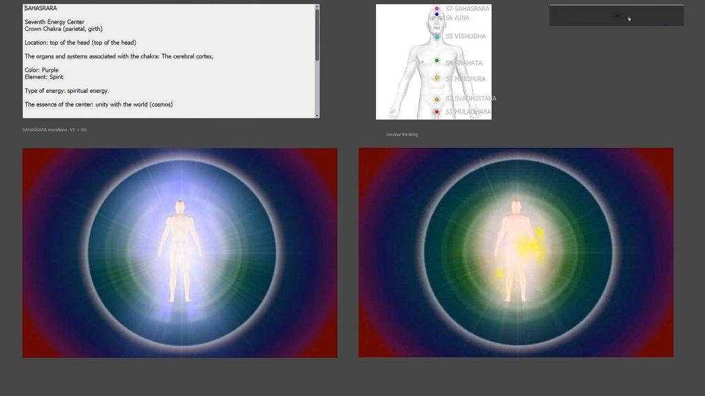 BIOPHILIA TRACKER NLS CAPTURES_11_Bioanalizador_com